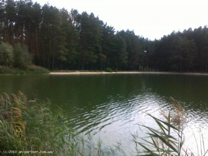 Предлогается к продаже 10га под садоводство в Залесье Бородянский р-н 40км от Ки 6363