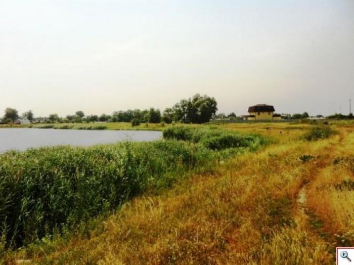 Рогозов - 10 соток за 2950 в 35 км от Киева!Отличные участки по 10 соток под дач 63336