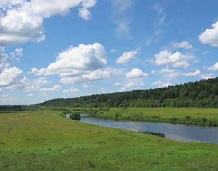 Куплю земельный участок, дом (для себя) 10-20 соток в Днепропетровске и области  63431
