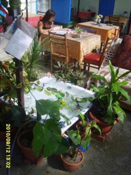Аккуратное частное домовладение ждет гостей, желающих отдохнуть на Лазурном бере 612200