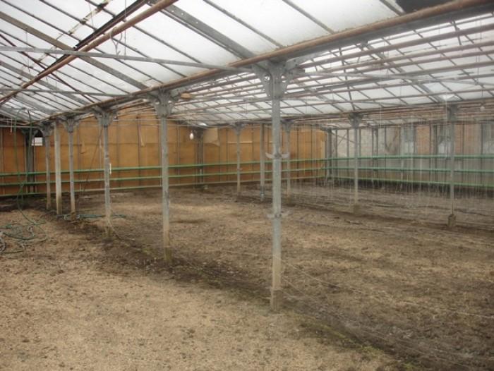 Тепличный комплекс, остеклено 1000м.кв., установлен каркас стальной 600м.кв., га 64352