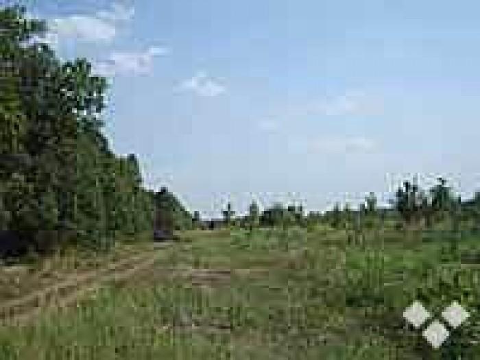 Предлагаем Вам купить земельный участок земли 2 га в с.Крушинка Васильковского р 63217