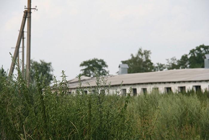 Барышевский р-н. Имущественный комплекс 1,5 га. 1900м2. Есть кран-балка, электри 64532