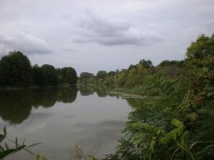 Продам 2 участка по 10 соток с выходом на воду,  в с.Хрещатик Черкасского р-на,  63569