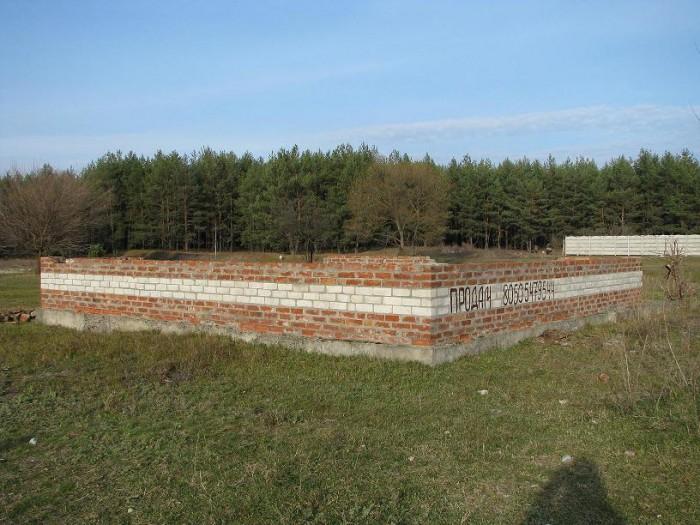 Продам свой участок 15 соток с выходом в сосновый лес и на реку Северский Донец, 63599