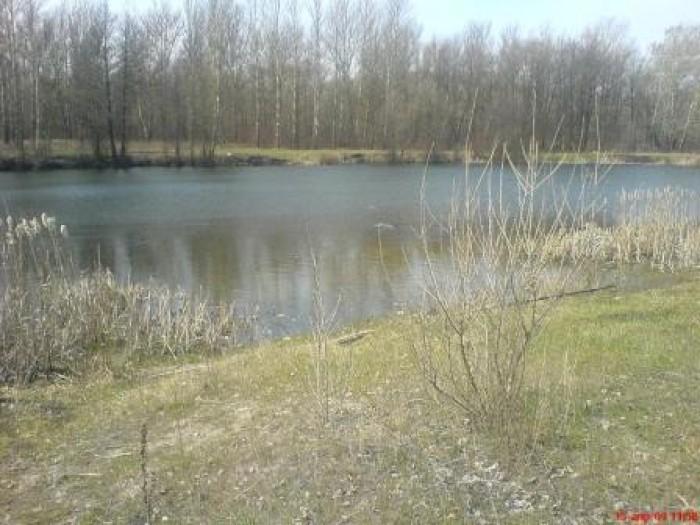 Продам свой живописный участок 10 соток п. Башкировка, с выходом в сосновый лес, 63601
