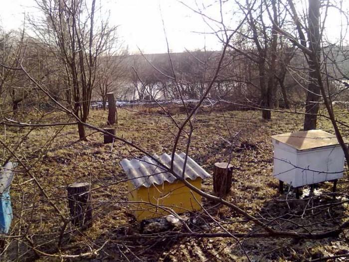 Продам усадьбу (дом и земля в селе) - 0,6Га,.  Прекрасное место, у пруда. Полтав 621242