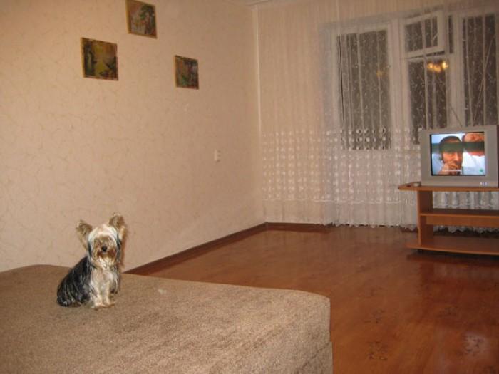 Посуточно сдаю 1-ную квартиру район Москольцо, евроремонт, вся бытовая техника.  613307
