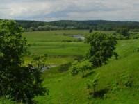 Предлогается к продаже участок рядом лесной массив (сосновый) с коммуникациями,  63668