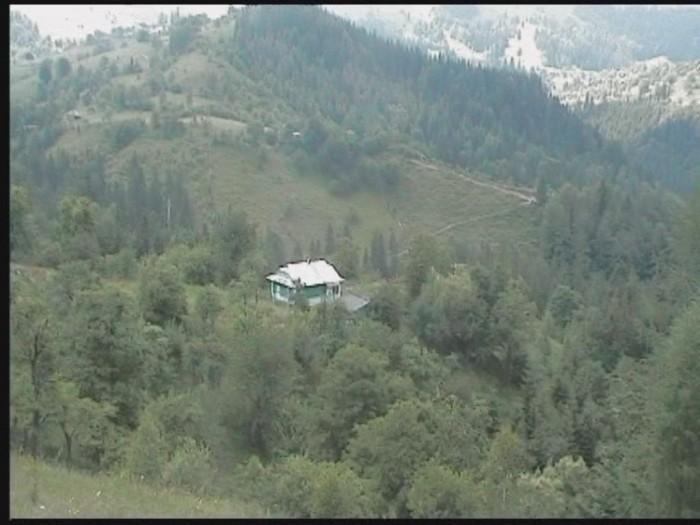 Продаються земельні ділянки (2.3, 4 Га) з будинками  в Карпатах. Поруч з туристи 63898