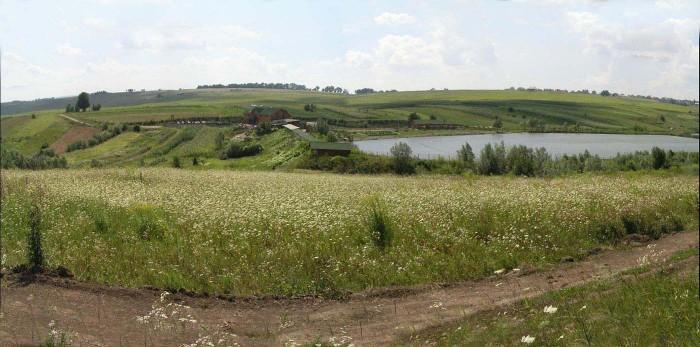 Земельна ділянка в с.Коровія Глибоцького р-ну (1 км від межі міста), 11 соток пі 63965