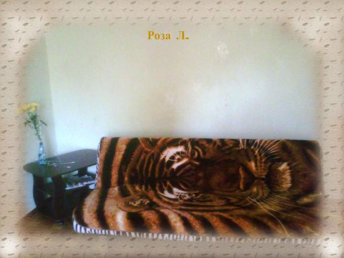 1-ком. квартиры, хорошее состояние, чистота и порядок, ТВ, DVD, холодильник, СВЧ 614264