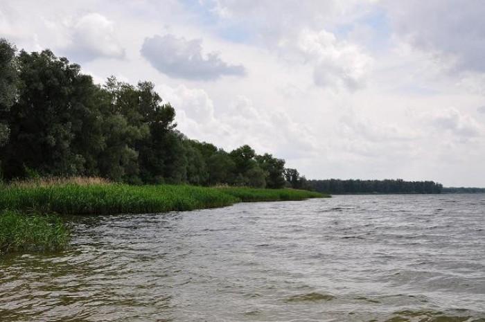 Продам участок с своим берегом на судоходном русле р. Самара. в Новомосковске 9с 631015