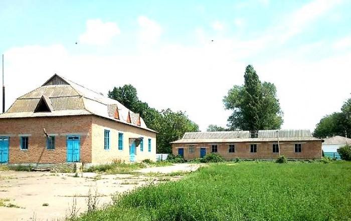 Переработка зерна (мука-выпечка) и подсолнечника в Одессе.Хотите зарабатывать ми 641867