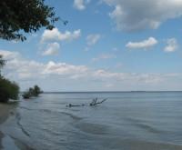 На берегу Кременчугского водохранилища в садовом товариществе. на участке есть э 63918