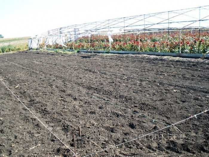 Продам фермерское хозяйство.Площадь участка 23 га.Поливные поля — 5га. Гос. Акт  631306