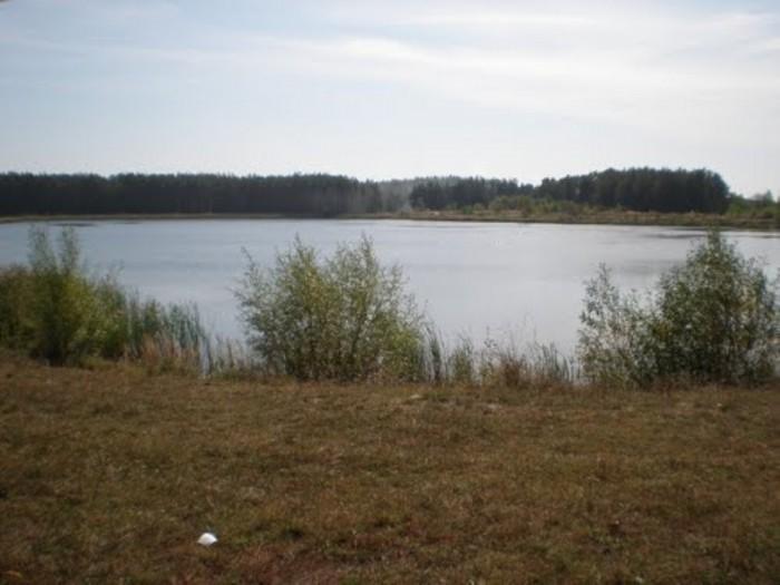 Бородянский р-н, Дружня садовое товарищество, находится между селами Дружня и За 631341