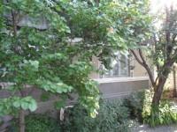Продам дом, общая площадь 101 кв.м., центр Новой Одессы, дом каменный, белая шуб 622448