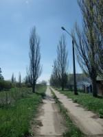 Продается  база отдыха на берегу Азовского моря в 25 км от г. Приморска (Запорож 642540