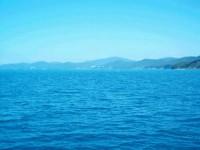 Продаю участок на Черноморской косе, до моря 350 м., коммуникации возле участка. 631347