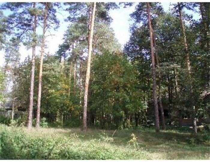 Ходосеевка. Большой выбор земельных участков под застройку по самым низким ценам 631392