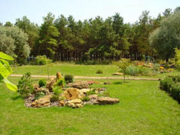 Продается участок земли длина 154м  ширина 75м. Участок расположен в непосредств 631409