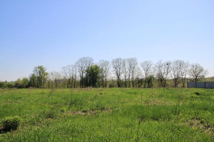 Продается участок в экологично чистом месте - Блиставица. Поверхность участка ид 631423
