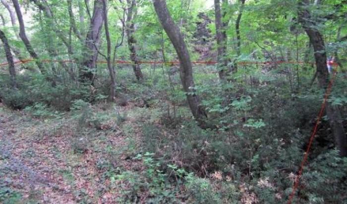 Земельный участок в Крыму без посредников. Расположен в поселке Олива, в 50м над 631445
