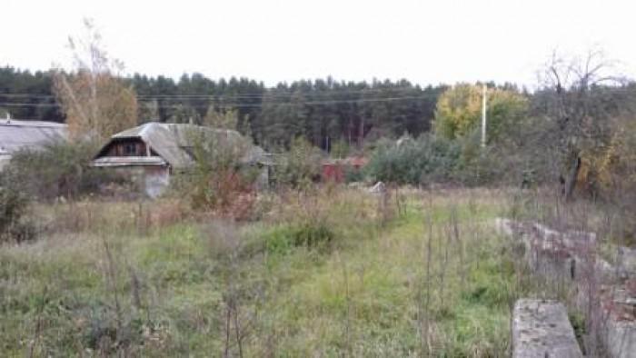 Участок  с домом 30 соток в селе Гута Катюжанська (Катюжанка) Киевской обл. 50 к 631554