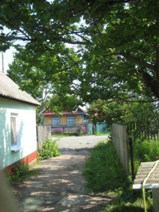 Продается дом в селе Ризня, Малинского  района, Житомирской области, Ковельская  623122