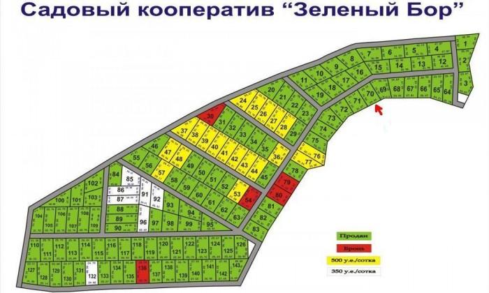 Продам участок в садовом кооперативе (Вышгородский р-н, пгт Дымер, Садовое общес 631587