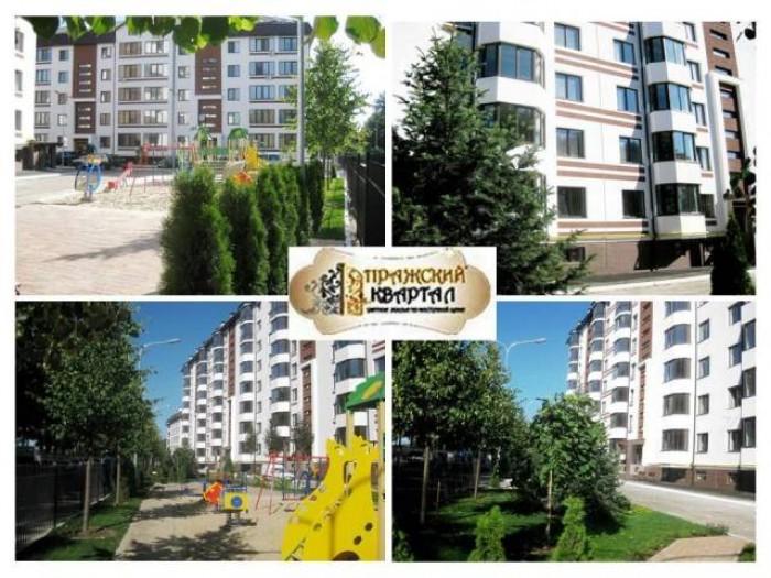 Продается 1 комнатная квартира в новом кирпичном 6 этажном доме, ЖК Пражский ква 617853