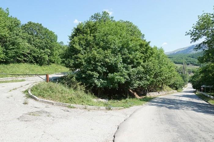 Участок 60 соток в поселке Лаванда (Крым), 100 метров от трассы Симферополь-Ялта 631704