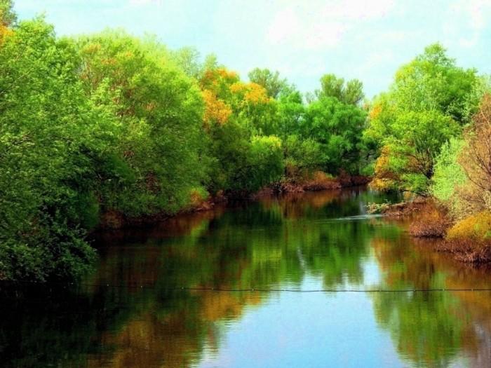 Участки: 6; 10; 20 соток на реке ОРЕЛЬ(100м).