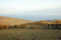 10 гектра в 3 км от моря в Алуште (Крым). Видовые!