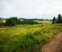 Продаються земельні ділянки з панорамним краєвидом 5 км. від ТК Буковель
