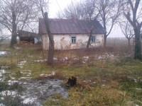 Продам будинок (дачу) загальна площа 0,82 га