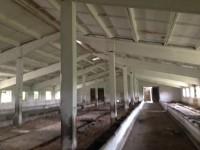 Продажа фермы, коровников в Черниговской области, документы в порядке